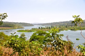 Overlooking the Nile